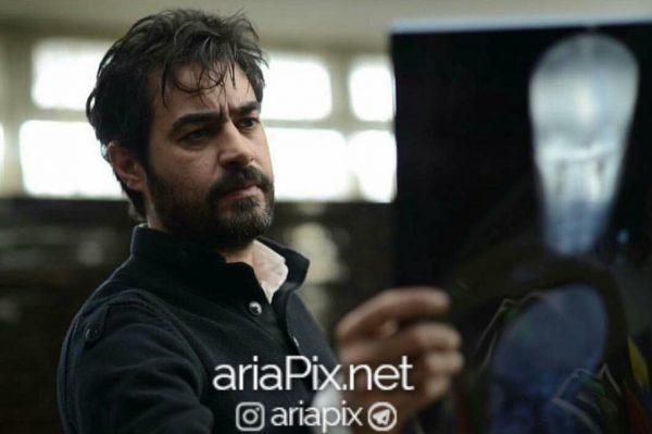 فیلمهای شهاب حسینی