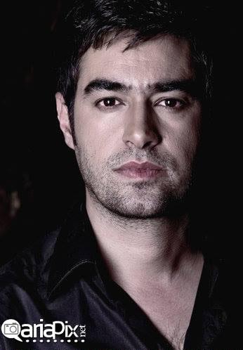 شهاب حسینی رکورد گینس