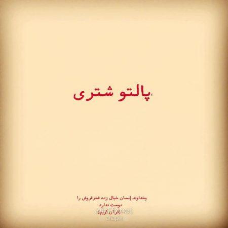 خلاصه داستان و بازیگران فیلم پالتو شتری +عکسها