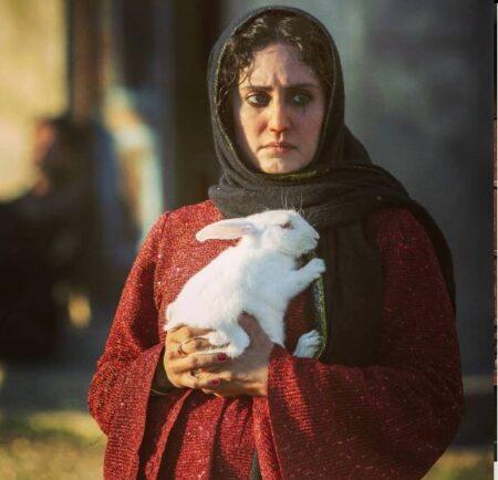 فیلمهای الناز شاکردوست در جشنواره فجر 99
